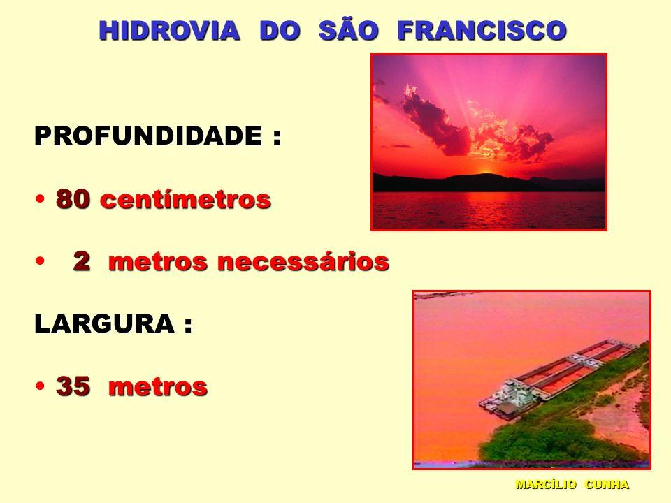 HIDROVIA DO SÃO FRANCISCO PROFUNDIDADE : 80centímetros 80 centímetros 2metros necessários 2 metros necessários LARGURA : 35metros 35 metros MARCÍLIO C