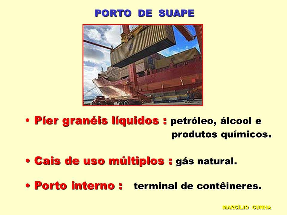 PORTO DE SUAPE Píer granéis líquidos : petróleo, álcool e produtos químicos. produtos químicos. Cais de uso múltiplos : gás natural. Cais de uso múlti