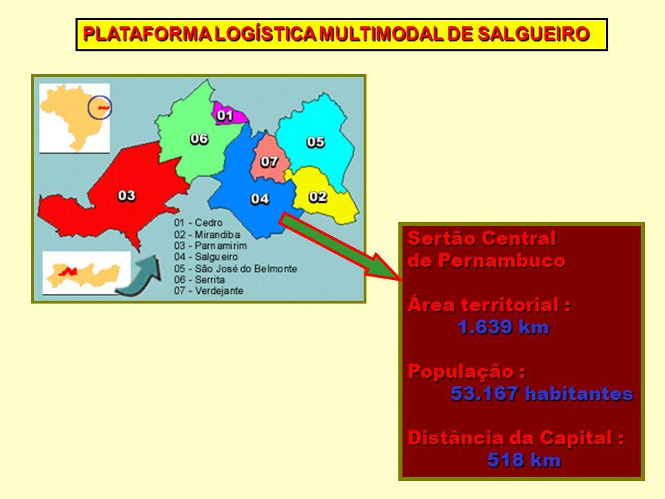 Sertão Central de Pernambuco Área territorial : 1.639 km 1.639 km População : 53.167 habitantes 53.167 habitantes Distância da Capital : 518 km 518 km PLATAFORMA LOGÍSTICA MULTIMODAL DE SALGUEIRO