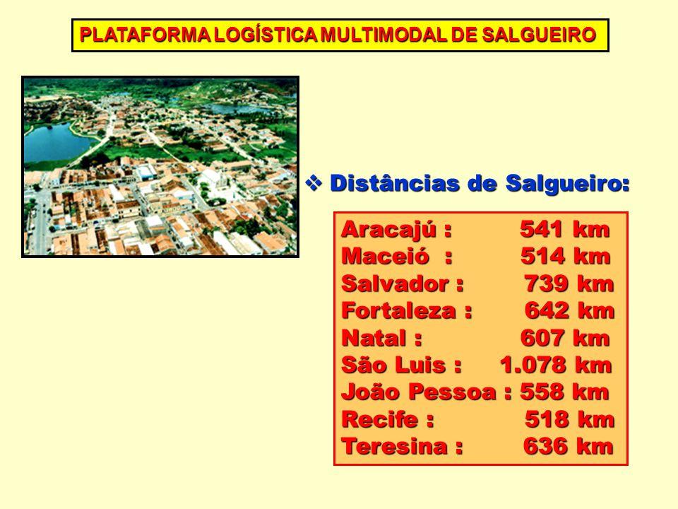 Aracajú : 541 km Maceió : 514 km Salvador : 739 km Fortaleza : 642 km Natal : 607 km São Luis : 1.078 km João Pessoa : 558 km Recife : 518 km Teresina : 636 km PLATAFORMA LOGÍSTICA MULTIMODAL DE SALGUEIRO Distâncias de Salgueiro: Distâncias de Salgueiro: