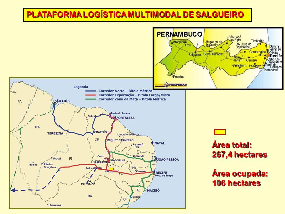 Área total: 267,4 hectares Área ocupada: 106 hectares PLATAFORMA LOGÍSTICA MULTIMODAL DE SALGUEIRO