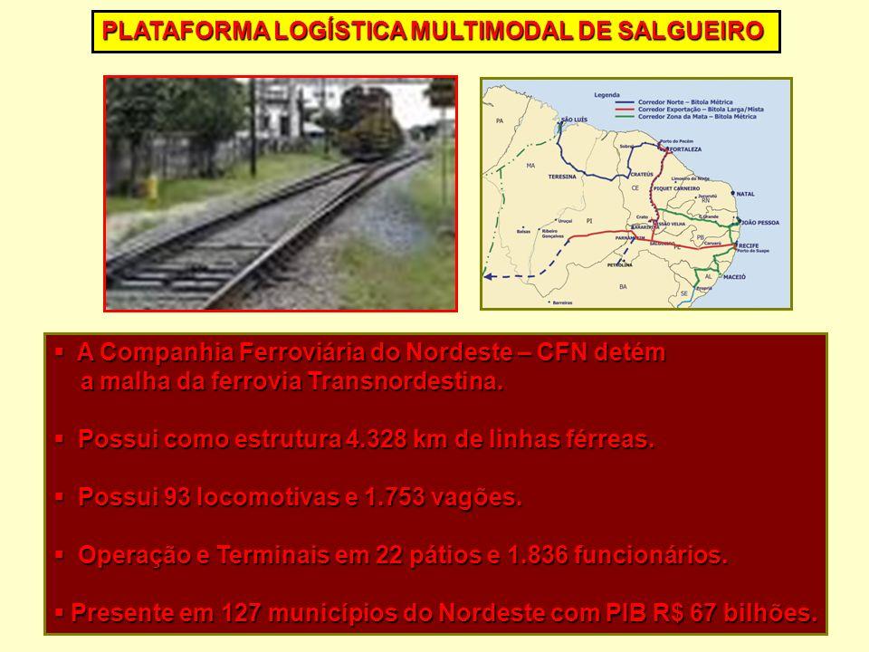 A Companhia Ferroviária do Nordeste – CFN detém A Companhia Ferroviária do Nordeste – CFN detém a malha da ferrovia Transnordestina. a malha da ferrov