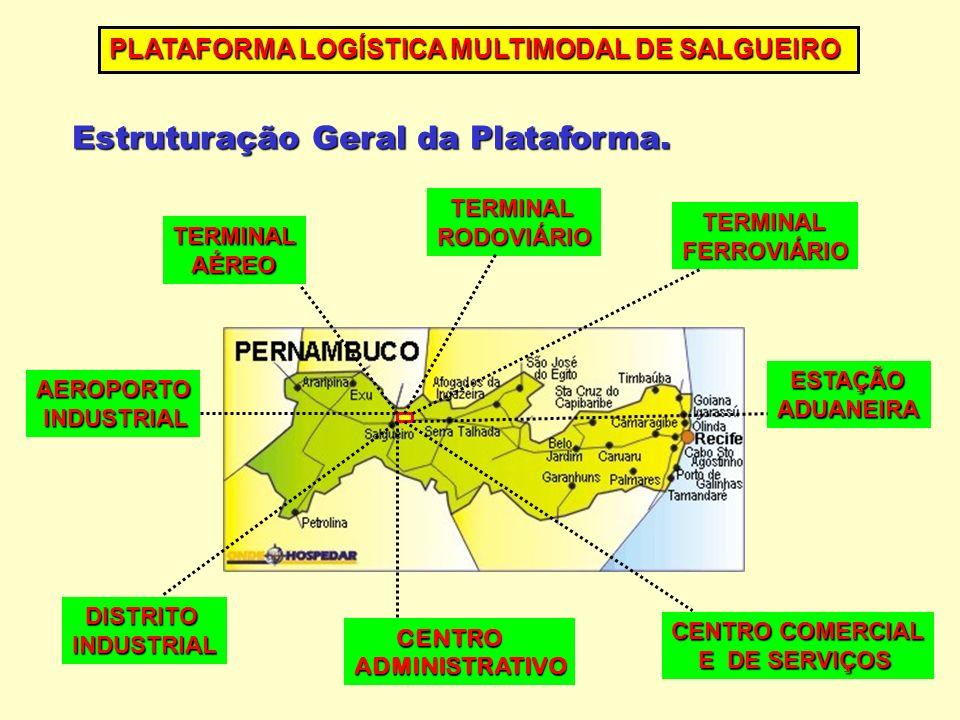 Estruturação Geral da Plataforma. PLATAFORMA LOGÍSTICA MULTIMODAL DE SALGUEIRO TERMINAL AÉREO AÉREO TERMINAL RODOVIÁRIO FERROVIÁRIO ESTAÇÃO ADUANEIRA
