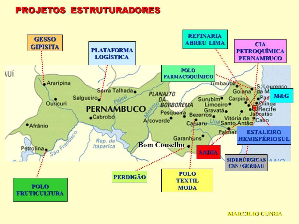 PROJETOS ESTRUTURADORES GESSOGIPISITA PLATAFORMALOGÍSTICA POLOFRUTICULTURA POLOTEXTILMODA REFINARIA ABREU LIMA CIAPETROQUÍMICAPERNAMBUCO M&G POLOFARMACOQUÍMICO SIDERÚRGICAS CSN / GERDAU ESTALEIRO HEMISFÉRIO SUL SADIA PERDIGÃO Bom Conselho.