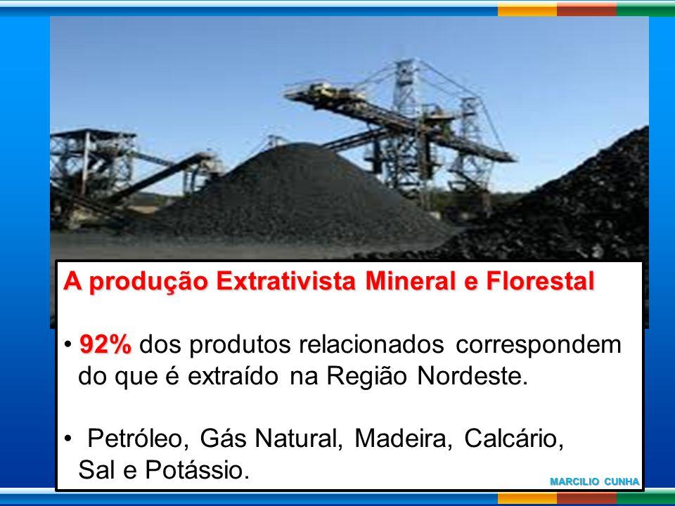 A produção Extrativista Mineral e Florestal 92% 92% dos produtos relacionados correspondem do que é extraído na Região Nordeste. Petróleo, Gás Natural