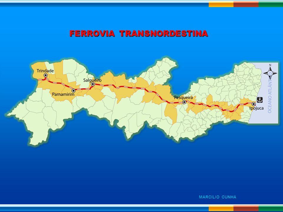FERROVIA TRANSNORDESTINA MARCILIO CUNHA