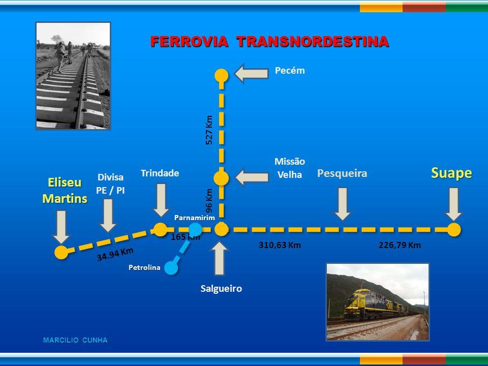 FERROVIA TRANSNORDESTINA EliseuMartins Divisa PE / PI Trindade Missão Velha Pecém Suape 34.94 Km 165 Km 96 Km 527 Km 310,63 Km226,79 Km Pesqueira Salg