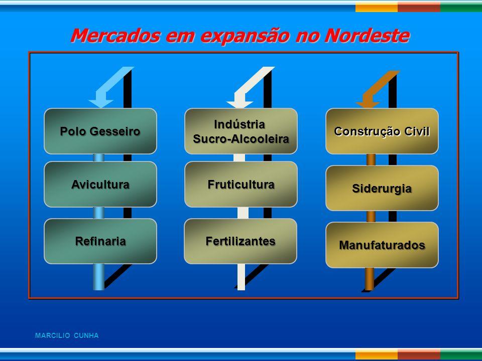 Mercados em expansão no Nordeste Mercados em expansão no Nordeste Polo Gesseiro Avicultura Refinaria IndústriaSucro-Alcooleira Fruticultura Fertilizan