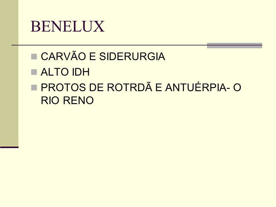 CARVÃO E SIDERURGIA ALTO IDH PROTOS DE ROTRDÃ E ANTUÉRPIA- O RIO RENO