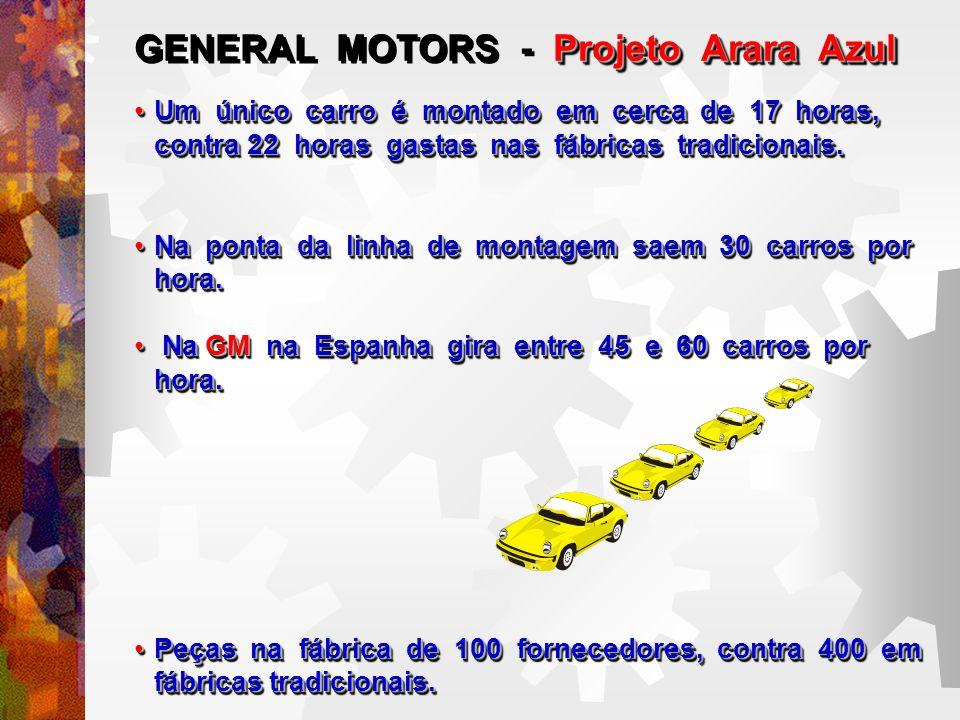 Projeto Arara Azul GENERAL MOTORS - Projeto Arara Azul Um único carro é montado em cerca de 17 horas, contra 22 horas gastas nas fábricas tradicionais