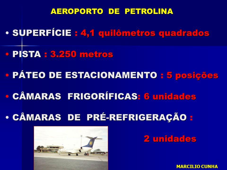 SUPERFÍCIE4,1 quilômetros quadrados SUPERFÍCIE : 4,1 quilômetros quadrados PISTA3.250 metros PISTA : 3.250 metros PÁTEO DE ESTACIONAMENTO5 posições PÁ