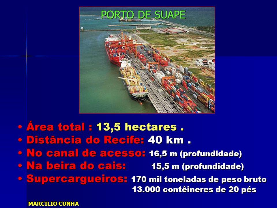 Área total : 13,5 hectares. Distância do Recife: 40 km. Distância do Recife: 40 km. No canal de acesso: 16,5 m (profundidade) No canal de acesso: 16,5