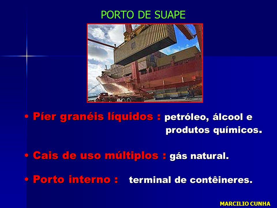 Píer granéis líquidos : petróleo, álcool e produtos químicos. produtos químicos. Cais de uso múltiplos : gás natural. Cais de uso múltiplos : gás natu