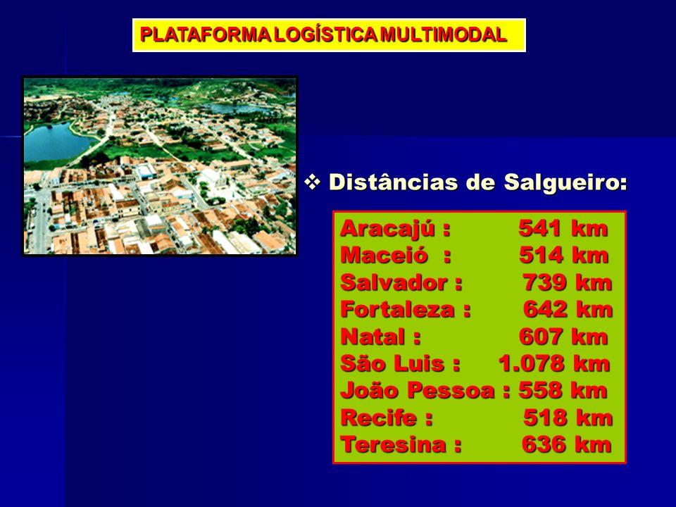 PLATAFORMA LOGÍSTICA MULTIMODAL Distâncias de Salgueiro: Distâncias de Salgueiro: Aracajú : 541 km Maceió : 514 km Salvador : 739 km Fortaleza : 642 k