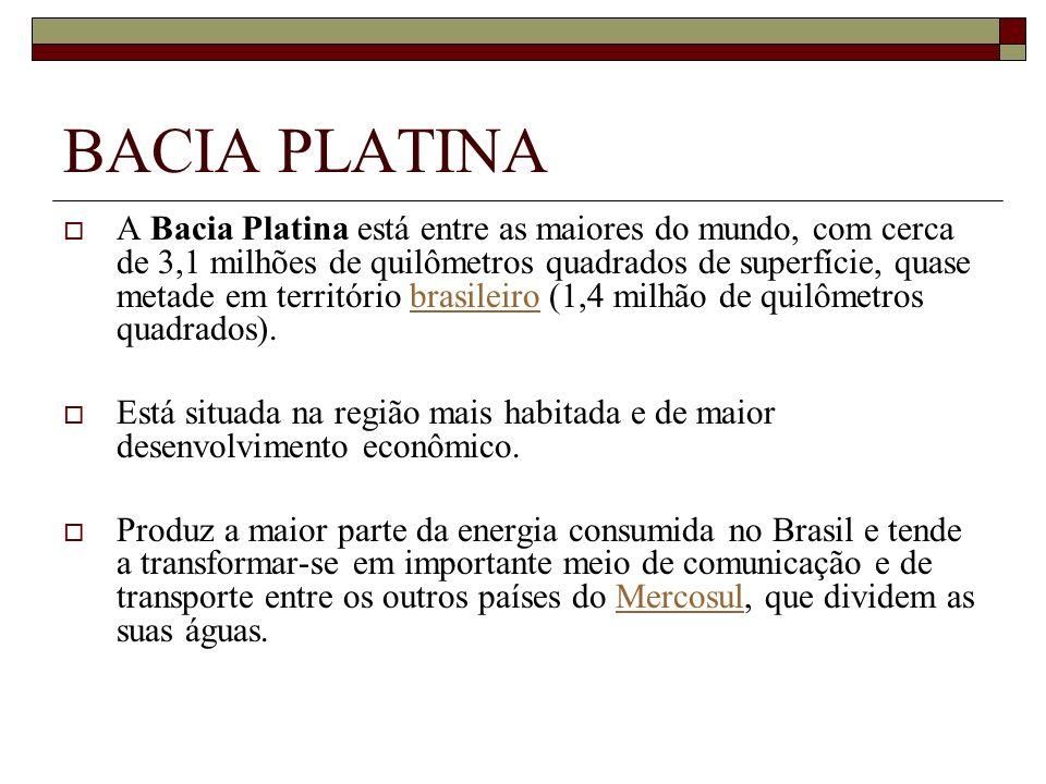 A Bacia Platina está entre as maiores do mundo, com cerca de 3,1 milhões de quilômetros quadrados de superfície, quase metade em território brasileiro
