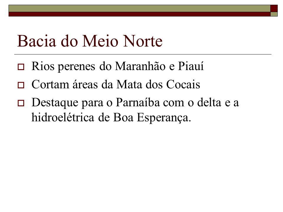 Bacia do Meio Norte Rios perenes do Maranhão e Piauí Cortam áreas da Mata dos Cocais Destaque para o Parnaíba com o delta e a hidroelétrica de Boa Esp