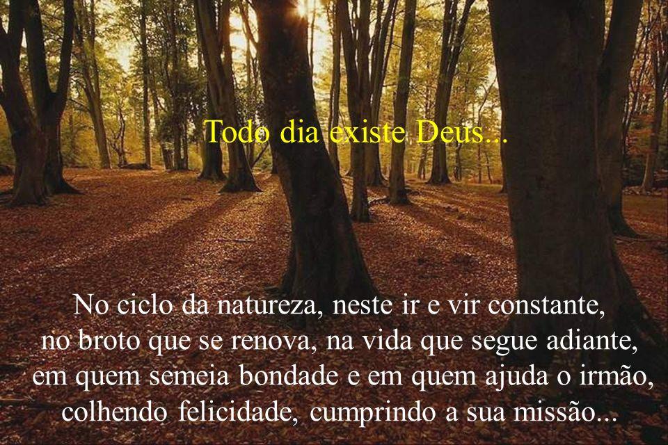 No ciclo da natureza, neste ir e vir constante, no broto que se renova, na vida que segue adiante, em quem semeia bondade e em quem ajuda o irmão, col