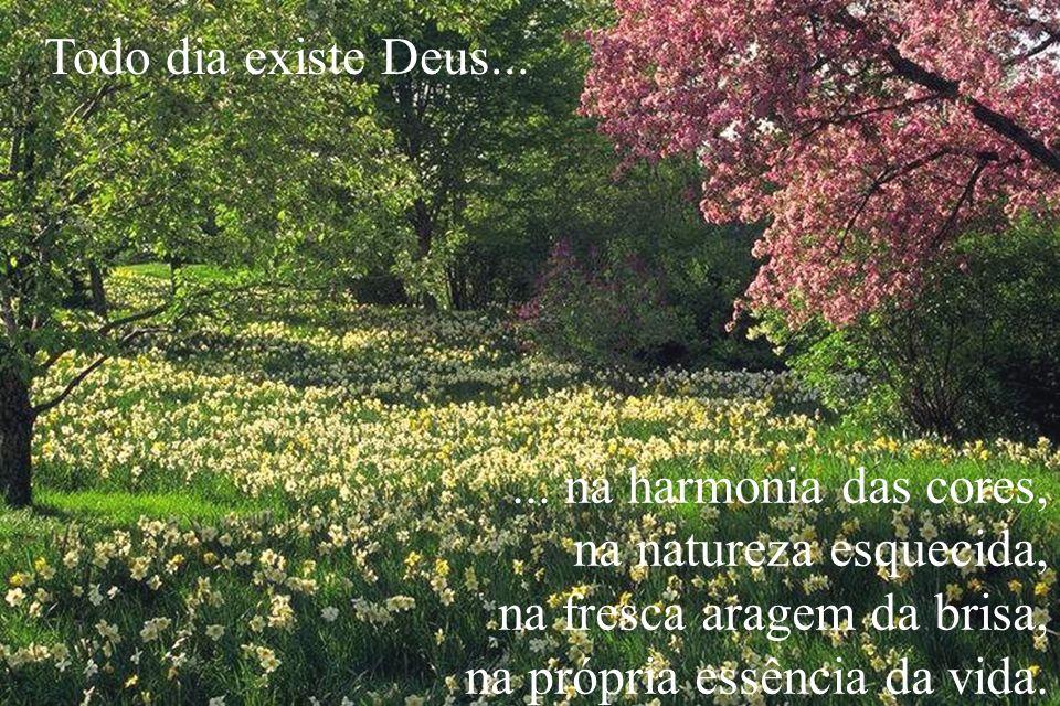 ... na harmonia das cores, na natureza esquecida, na fresca aragem da brisa, na própria essência da vida. Todo dia existe Deus...