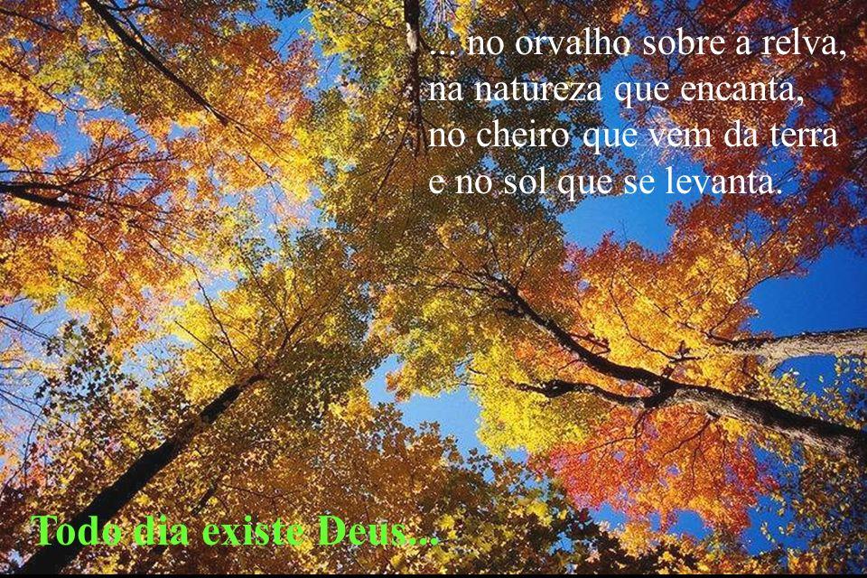 ... no orvalho sobre a relva, na natureza que encanta, no cheiro que vem da terra e no sol que se levanta. Todo dia existe Deus...