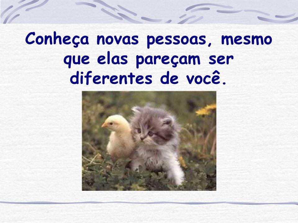 Conheça novas pessoas, mesmo que elas pareçam ser diferentes de você.