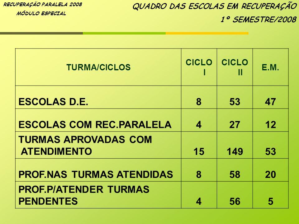 RECUPERAÇÃO PARALELA 2008 MÓDULO ESPECIAL TURMA/CICLOS CICLO I CICLO II E.M. ESCOLAS D.E.85347 ESCOLAS COM REC.PARALELA42712 TURMAS APROVADAS COM ATEN