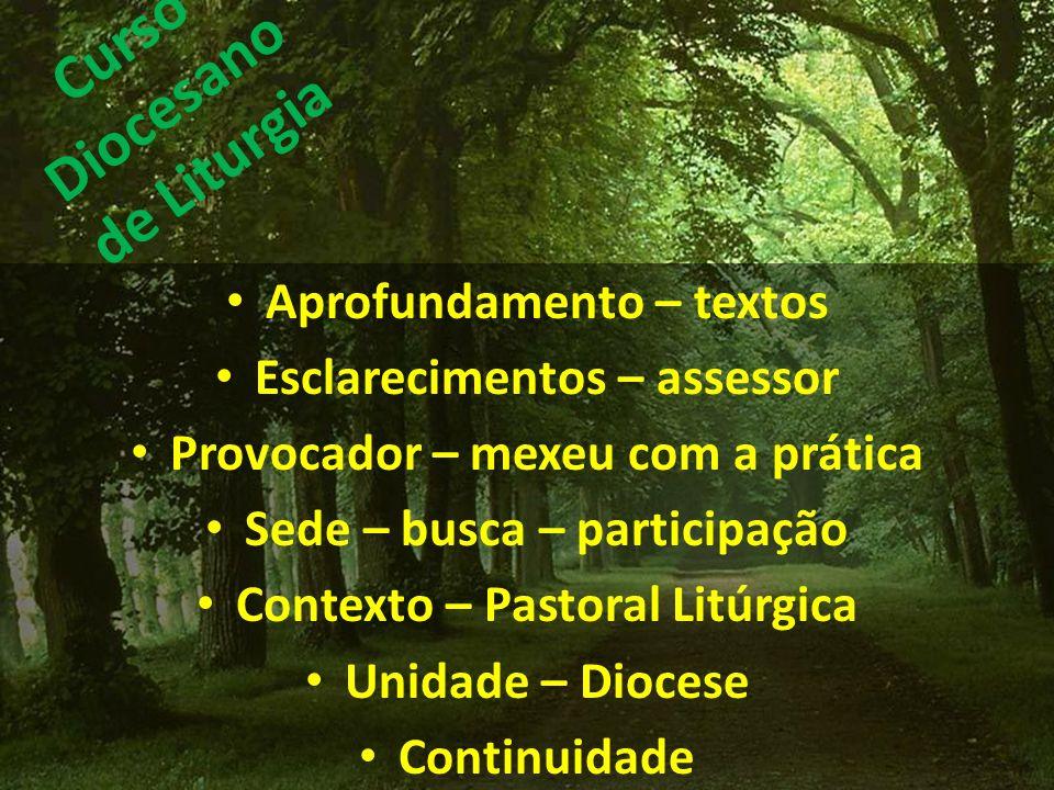 Curso Diocesano de Liturgia Aprofundamento – textos Esclarecimentos – assessor Provocador – mexeu com a prática Sede – busca – participação Contexto –