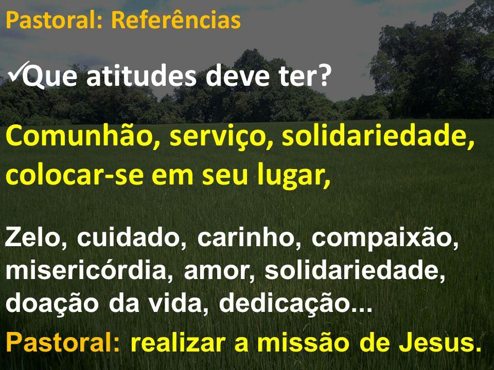 Pastoral: Referências Que atitudes deve ter? Comunhão, serviço, solidariedade, colocar-se em seu lugar, Zelo, cuidado, carinho, compaixão, misericórdi