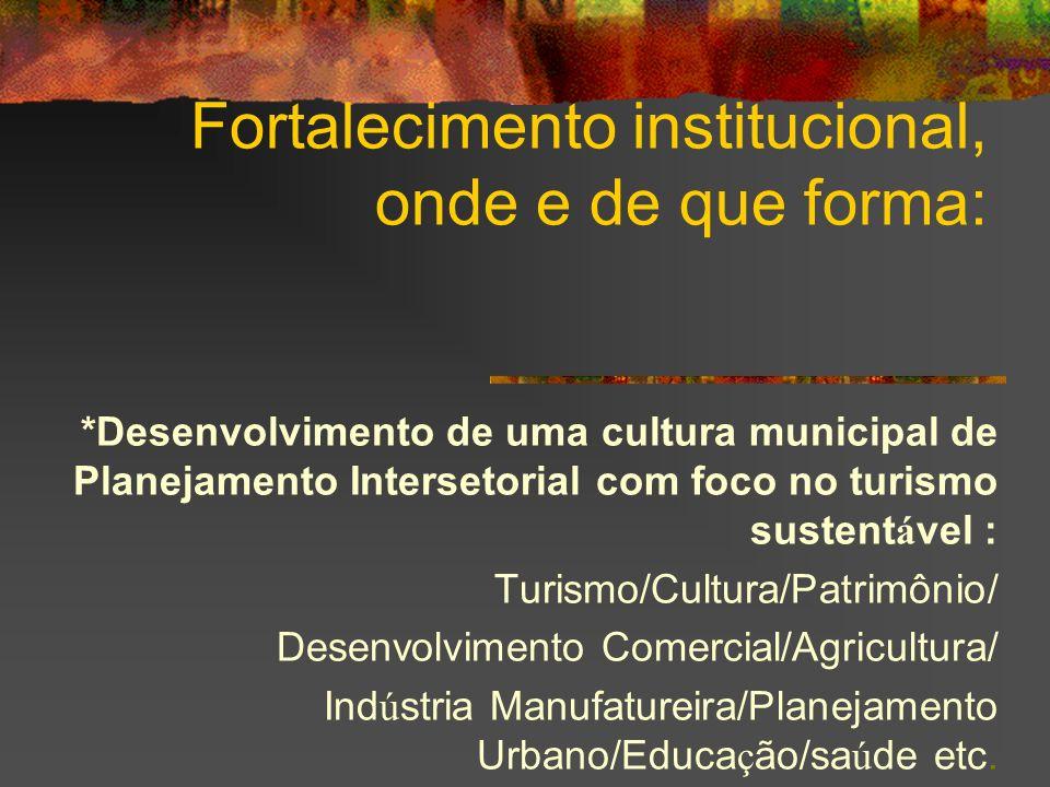 Fortalecimento institucional, onde e de que forma: *Desenvolvimento de uma cultura municipal de Planejamento Intersetorial com foco no turismo sustent
