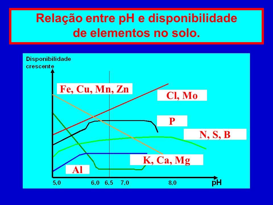 Fósforo Cálcio Magnésio Cobre Ferro Manganês Zinco Pouco móveis Mobilidade no solo