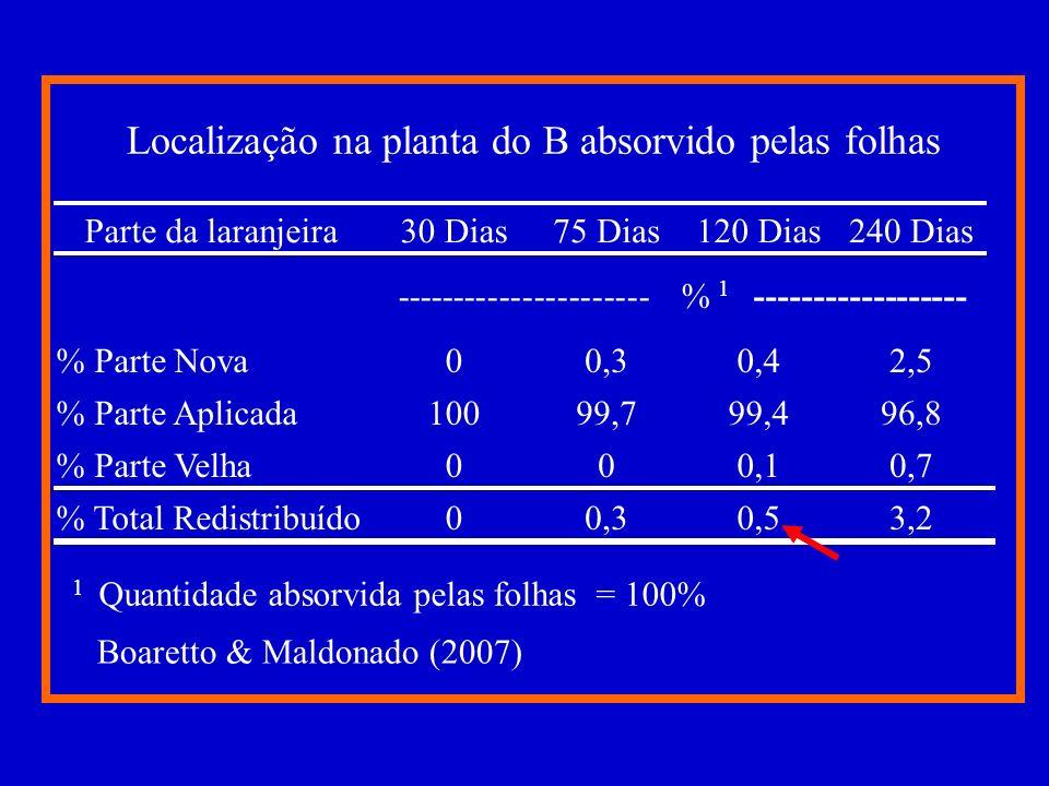 Mobilidade de redistribuição dos elementos na planta Obs.: Ordem decrescente de translocação dentro da coluna B