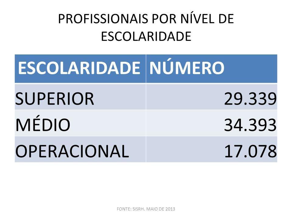 PROFISSIONAIS POR NÍVEL DE ESCOLARIDADE ESCOLARIDADENÚMERO SUPERIOR29.339 MÉDIO34.393 OPERACIONAL17.078 FONTE: SISRH. MAIO DE 2013
