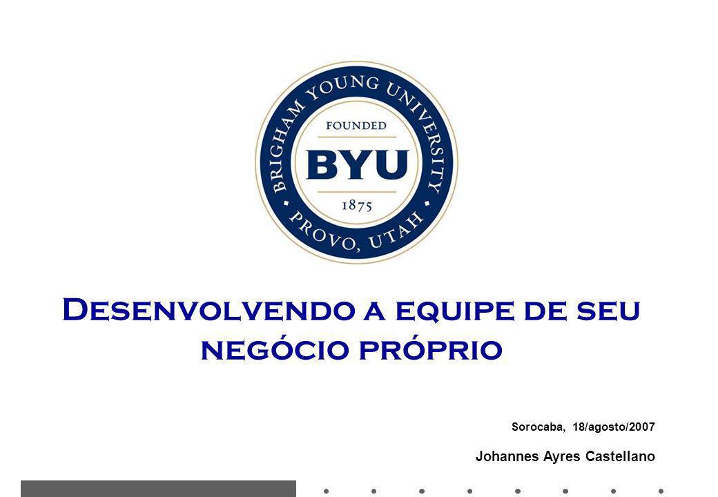Sorocaba, 18/agosto/2007 Johannes Ayres Castellano Desenvolvendo a equipe de seu negócio próprio