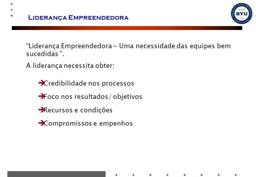Liderança Empreendedora Liderança Empreendedora - Uma necessidade das equipes bem sucedidas. A liderança necessita obter: Credibilidade nos processos