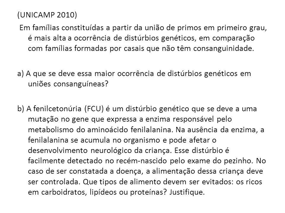 (UNICAMP 2010) Em famílias constituídas a partir da união de primos em primeiro grau, é mais alta a ocorrência de distúrbios genéticos, em comparação