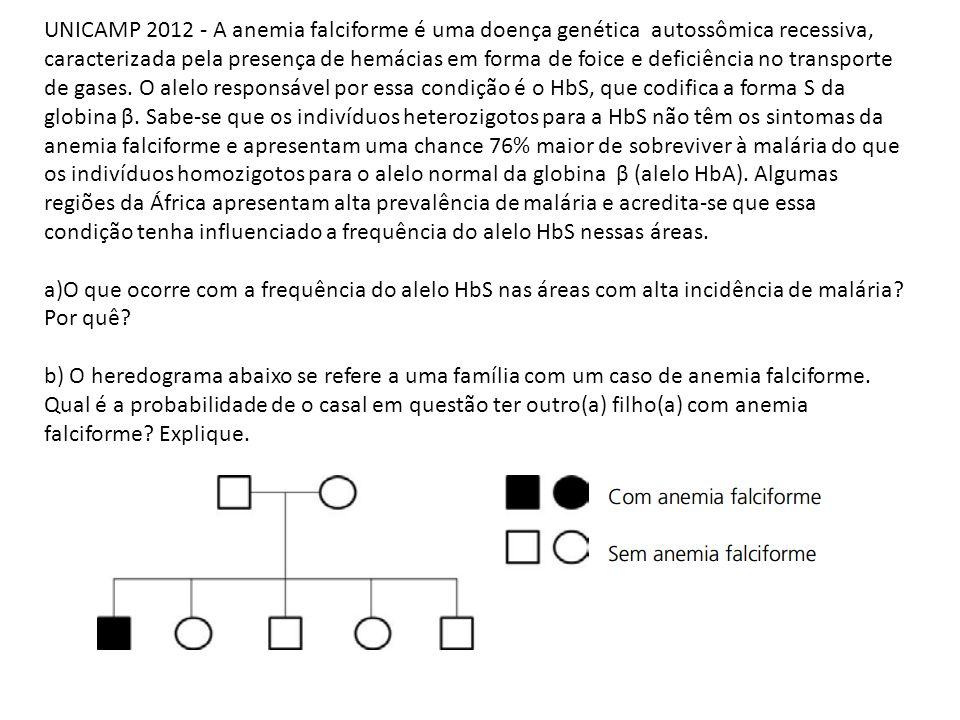 UNICAMP 2012 - A anemia falciforme é uma doença genética autossômica recessiva, caracterizada pela presença de hemácias em forma de foice e deficiênci