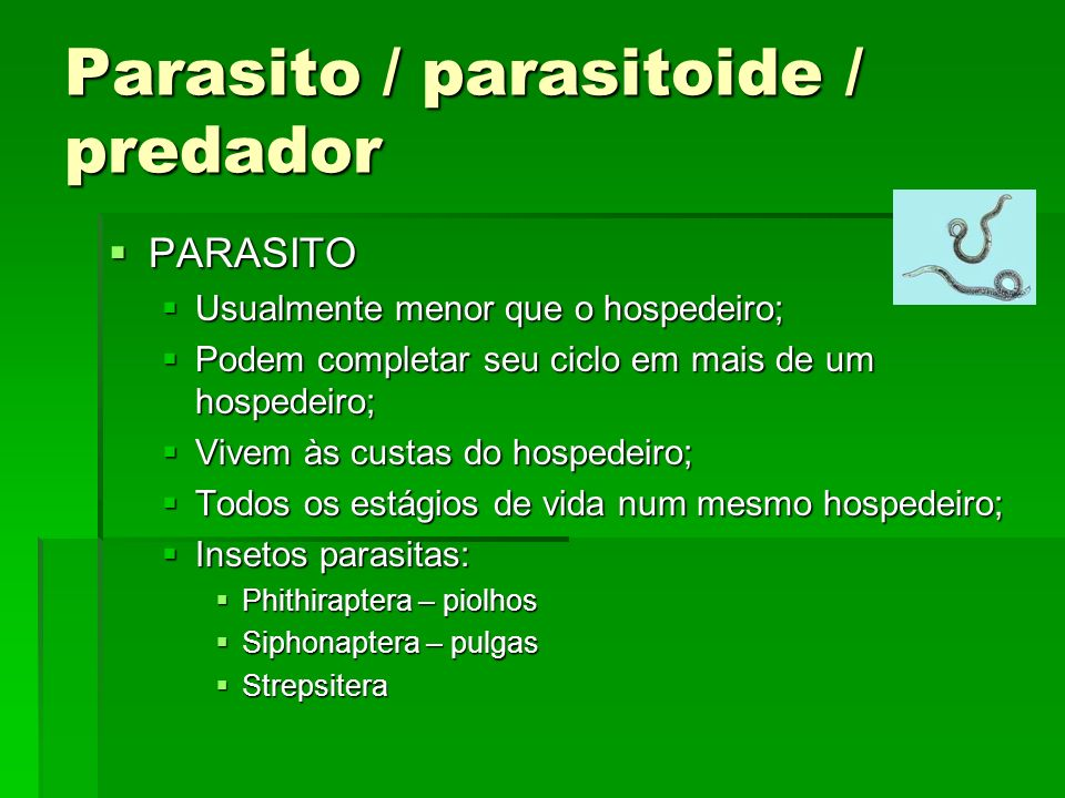 Parasito / parasitoide / predador PARASITO PARASITO Usualmente menor que o hospedeiro; Usualmente menor que o hospedeiro; Podem completar seu ciclo em mais de um hospedeiro; Podem completar seu ciclo em mais de um hospedeiro; Vivem às custas do hospedeiro; Vivem às custas do hospedeiro; Todos os estágios de vida num mesmo hospedeiro; Todos os estágios de vida num mesmo hospedeiro; Insetos parasitas: Insetos parasitas: Phithiraptera – piolhos Phithiraptera – piolhos Siphonaptera – pulgas Siphonaptera – pulgas Strepsitera Strepsitera