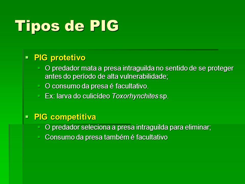 Tipos de PIG PIG protetivo PIG protetivo O predador mata a presa intraguilda no sentido de se proteger antes do período de alta vulnerabilidade; O predador mata a presa intraguilda no sentido de se proteger antes do período de alta vulnerabilidade; O consumo da presa é facultativo.