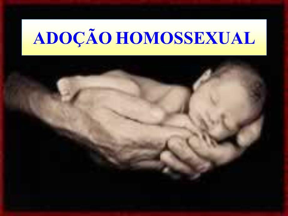 ADOÇÃO HOMOSSEXUAL