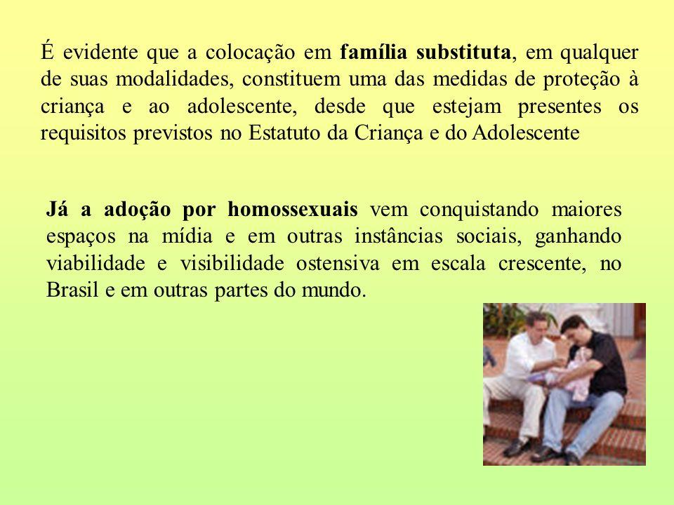 É evidente que a colocação em família substituta, em qualquer de suas modalidades, constituem uma das medidas de proteção à criança e ao adolescente,