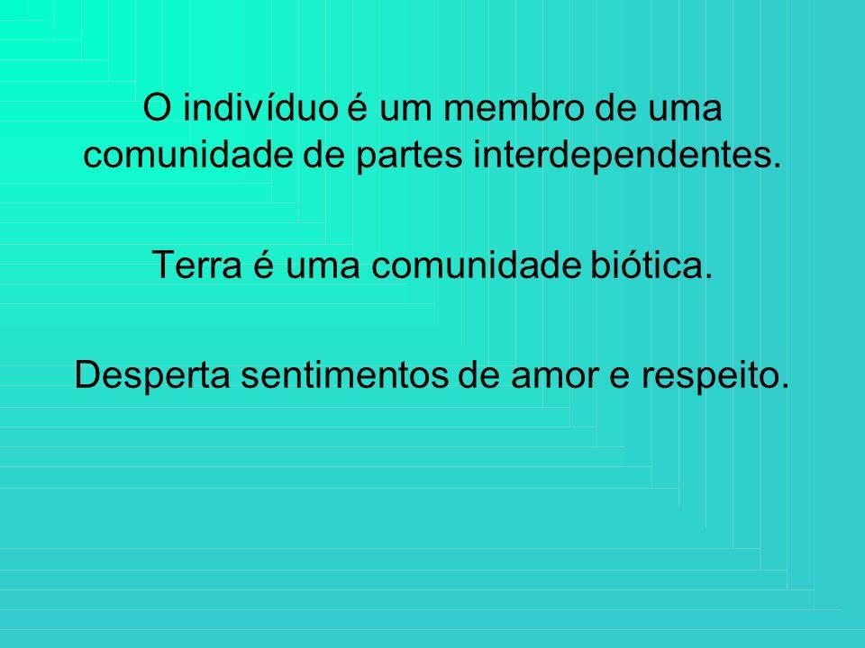 O indivíduo é um membro de uma comunidade de partes interdependentes. Terra é uma comunidade biótica. Desperta sentimentos de amor e respeito.