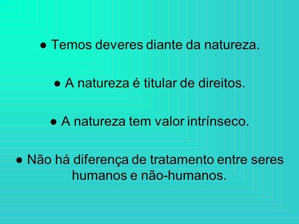 Temos deveres diante da natureza. A natureza é titular de direitos. A natureza tem valor intrínseco. Não há diferença de tratamento entre seres humano