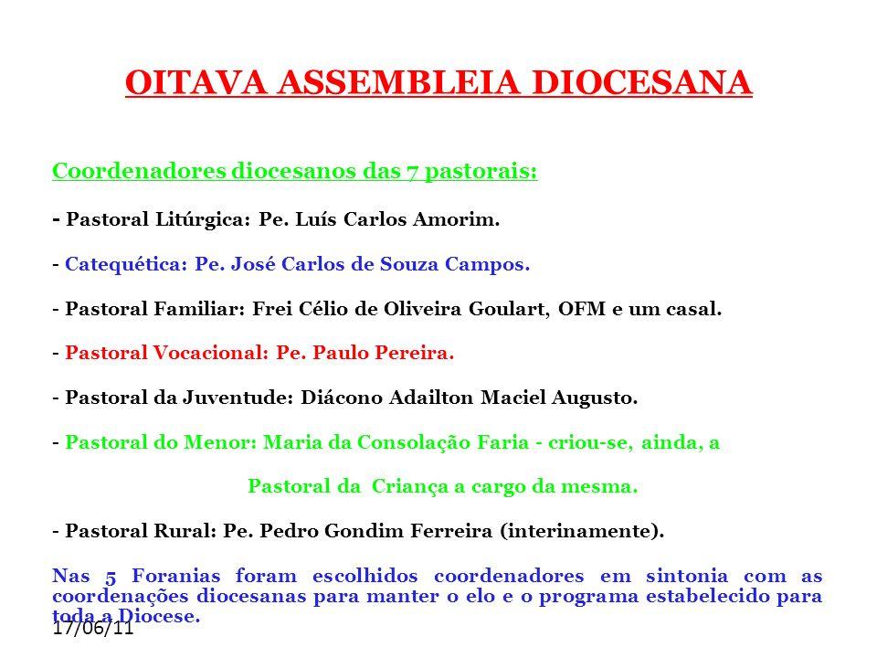 17/06/11 OITAVA ASSEMBLEIA DIOCESANA Coordenadores diocesanos das 7 pastorais: - Pastoral Litúrgica: Pe. Luís Carlos Amorim. - Catequética: Pe. José C