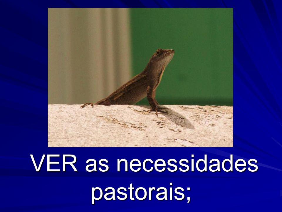 VER as necessidades pastorais; VER as necessidades pastorais;