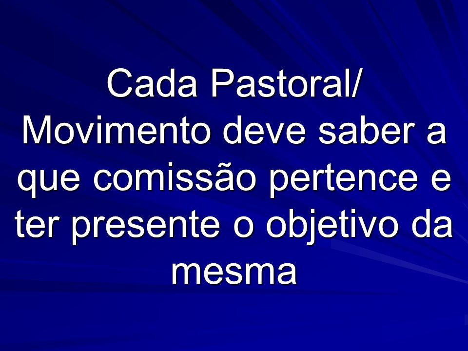 Cada Pastoral/ Movimento deve saber a que comissão pertence e ter presente o objetivo da mesma