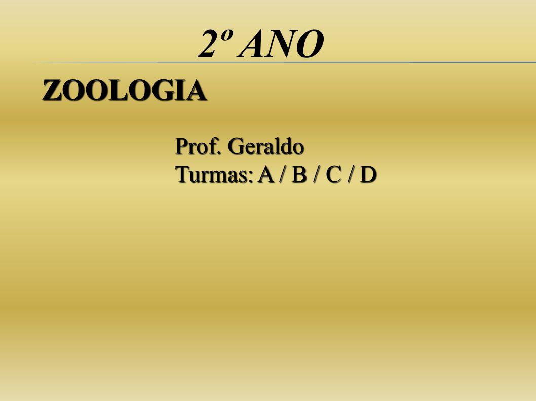 2º ANO Prof. Geraldo Turmas: A / B / C / D ZOOLOGIA