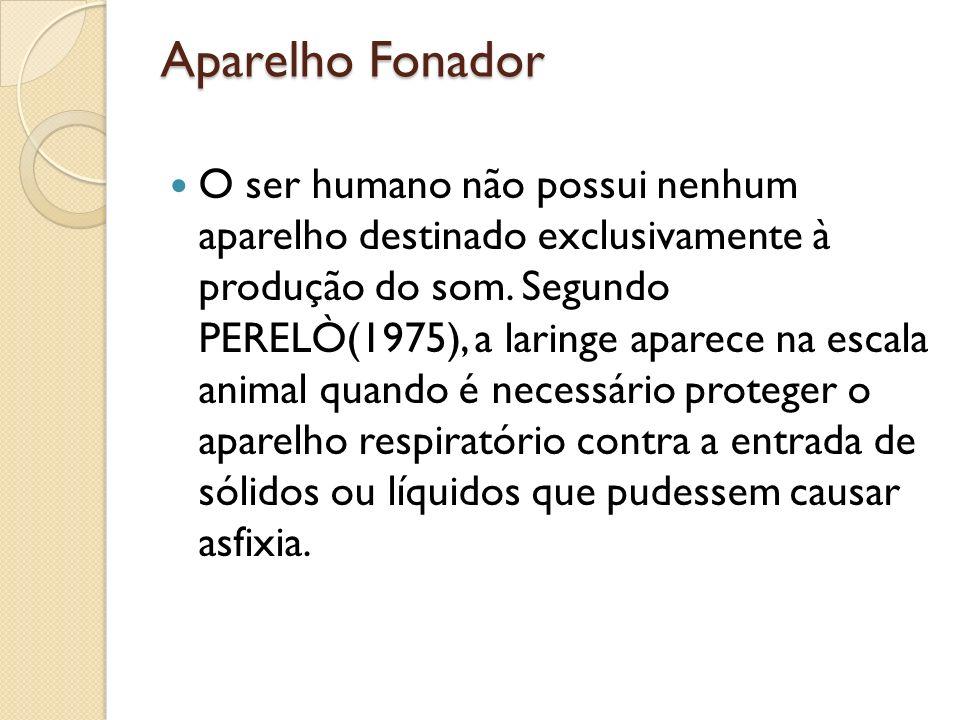 Aparelho Fonador O ser humano não possui nenhum aparelho destinado exclusivamente à produção do som. Segundo PERELÒ(1975), a laringe aparece na escala