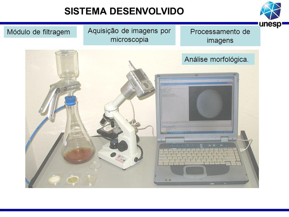 SISTEMA DESENVOLVIDO Análise morfológica. Módulo de filtragem Aquisição de imagens por microscopia Processamento de imagens