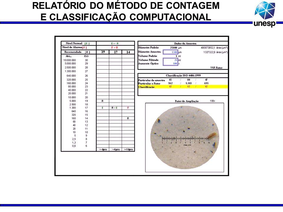 RELATÓRIO DO MÉTODO DE CONTAGEM E CLASSIFICAÇÃO COMPUTACIONAL