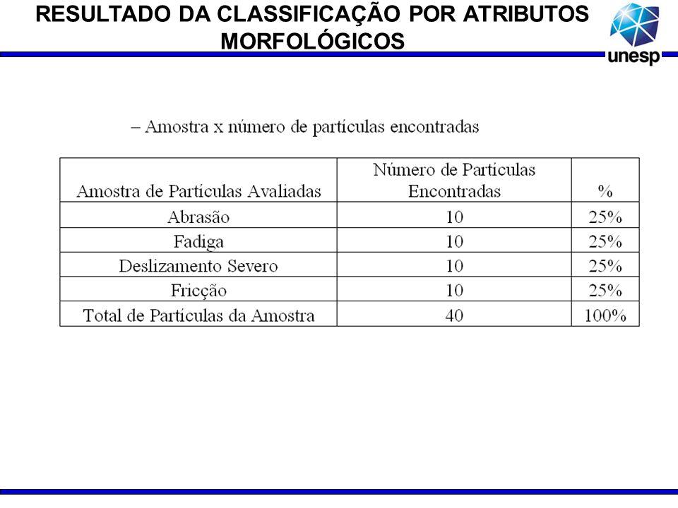 RESULTADO DA CLASSIFICAÇÃO POR ATRIBUTOS MORFOLÓGICOS