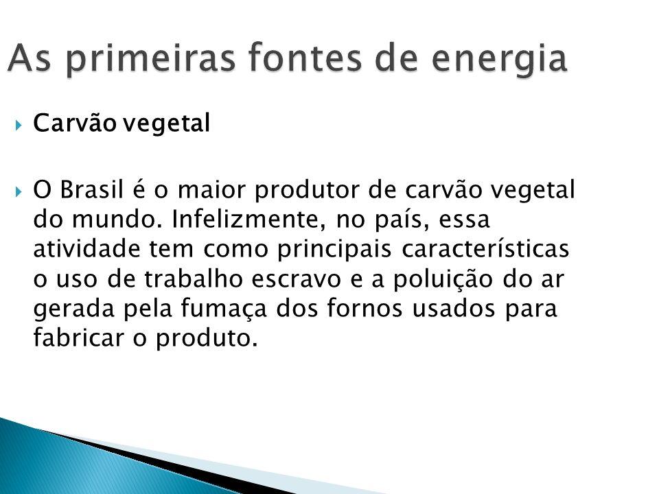Carvão vegetal O Brasil é o maior produtor de carvão vegetal do mundo. Infelizmente, no país, essa atividade tem como principais características o uso